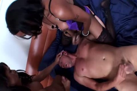 This man Has joy With Two ladyboys!